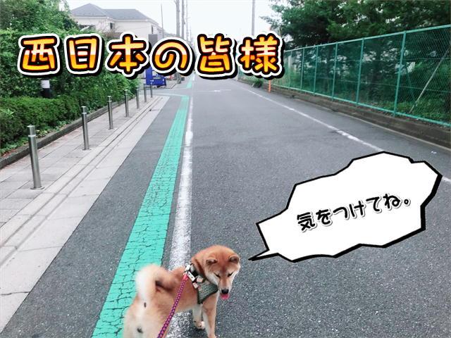 f:id:tetsujin64go:20190815074042j:plain