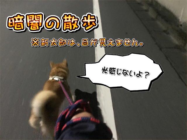f:id:tetsujin64go:20190816084309j:plain