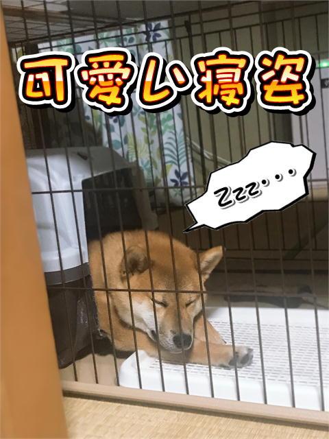 f:id:tetsujin64go:20190816134640j:plain