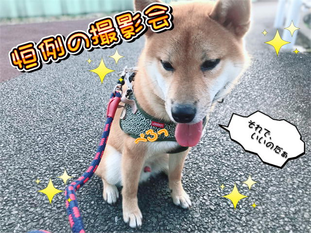f:id:tetsujin64go:20190817072343j:plain