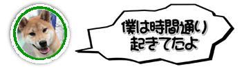 f:id:tetsujin64go:20190820114342j:plain