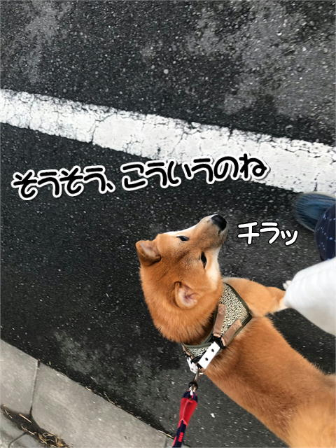 f:id:tetsujin64go:20190828125547j:plain