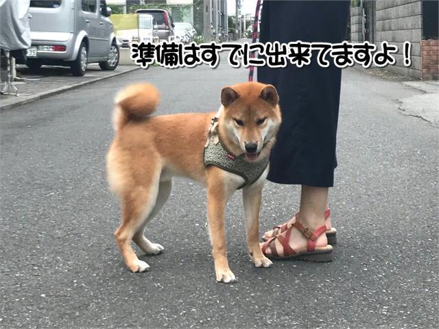 f:id:tetsujin64go:20190829213132j:plain