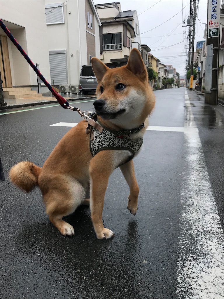 f:id:tetsujin64go:20190916104217j:plain