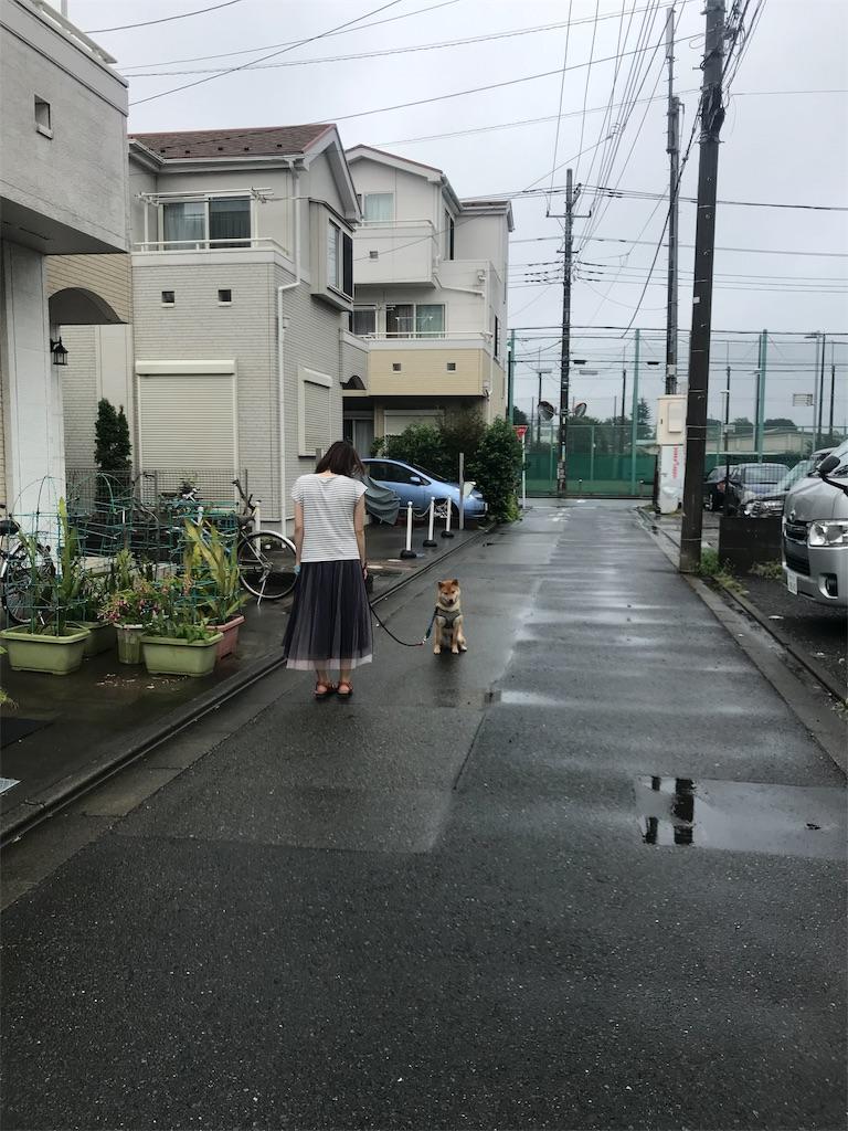 f:id:tetsujin64go:20190916104427j:plain