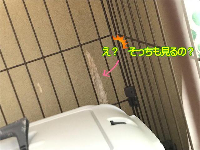 f:id:tetsujin64go:20190918090556j:plain