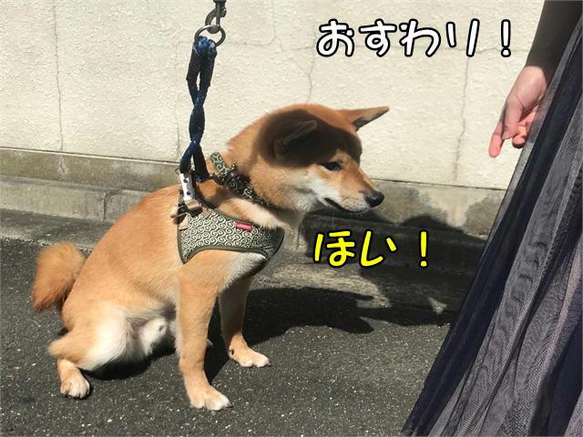 f:id:tetsujin64go:20190920155246j:plain