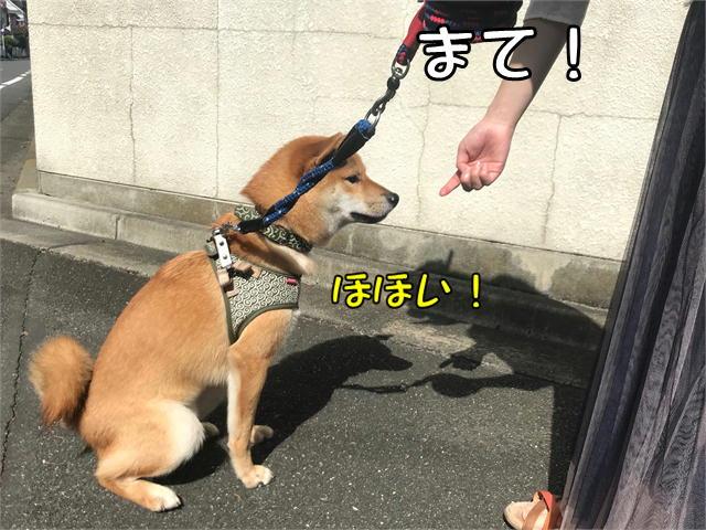 f:id:tetsujin64go:20190920155321j:plain