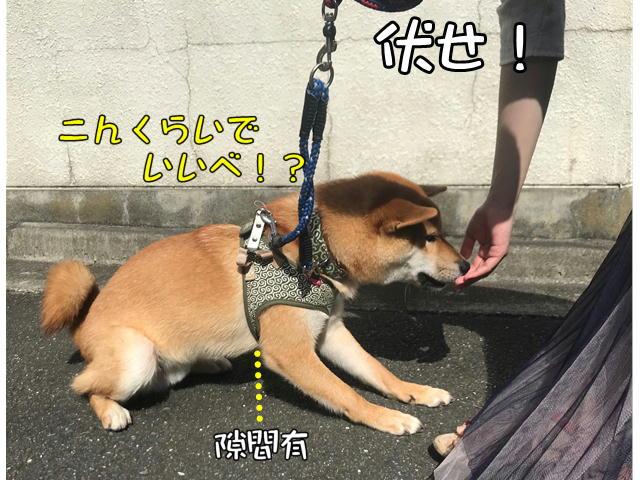 f:id:tetsujin64go:20190920155403j:plain