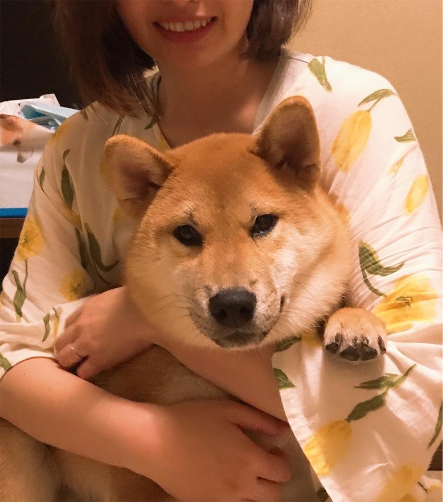 f:id:tetsujin64go:20190921104142j:image