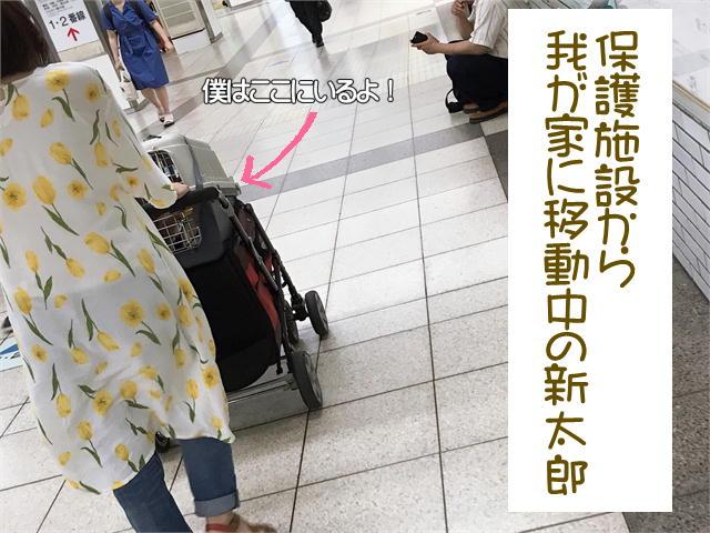 f:id:tetsujin64go:20190921221822j:plain