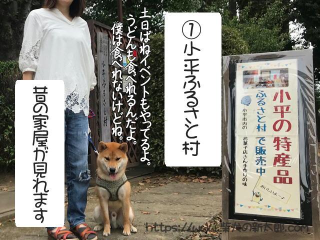 f:id:tetsujin64go:20190922152947j:plain