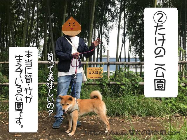 f:id:tetsujin64go:20190922153000j:plain