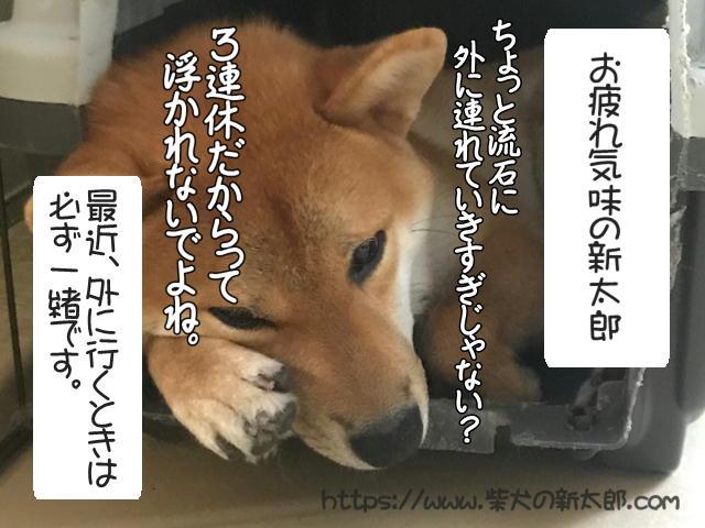 f:id:tetsujin64go:20190922153958j:plain