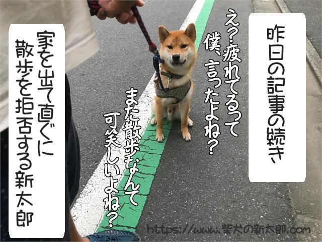f:id:tetsujin64go:20190922190312j:plain