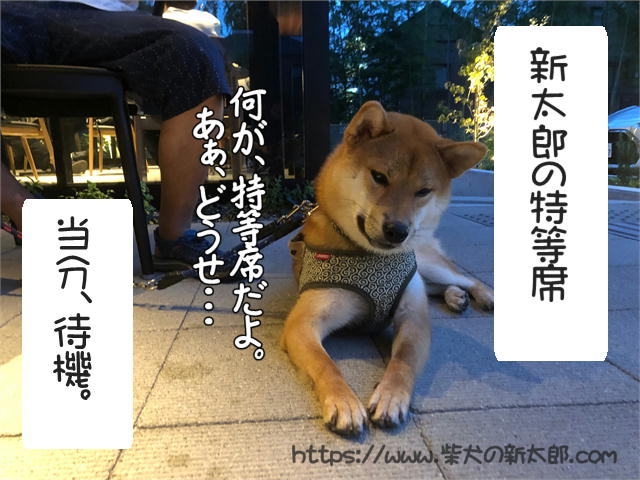 f:id:tetsujin64go:20190922190408j:plain