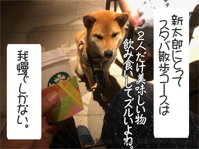 f:id:tetsujin64go:20190922190424j:plain