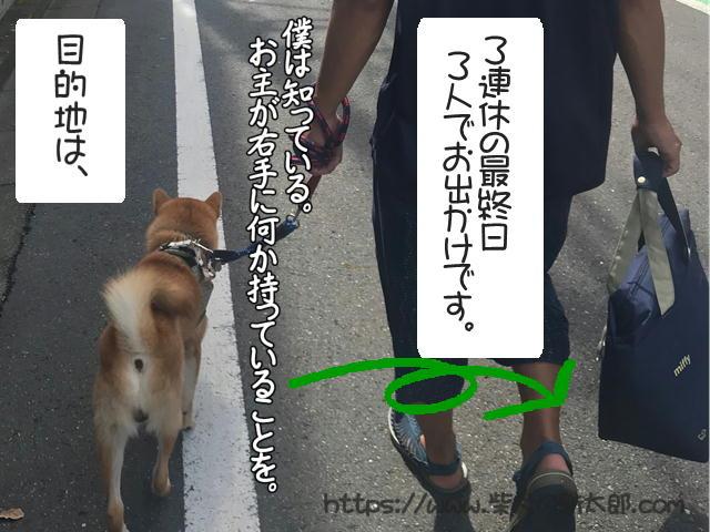 f:id:tetsujin64go:20190923124343j:plain