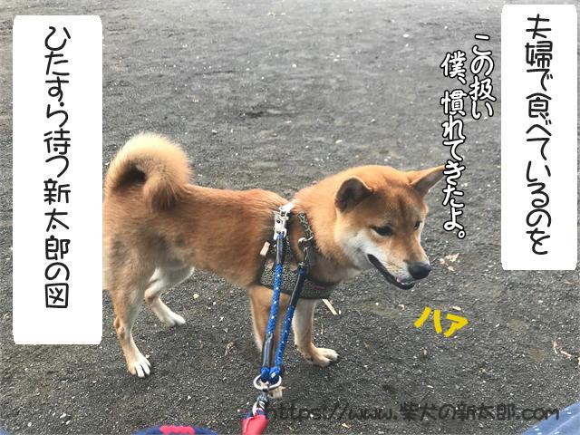 f:id:tetsujin64go:20190923124437j:plain