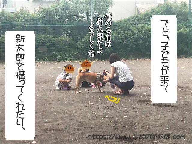 f:id:tetsujin64go:20190923124457j:plain