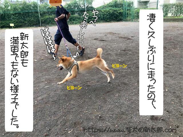 f:id:tetsujin64go:20190923124514j:plain