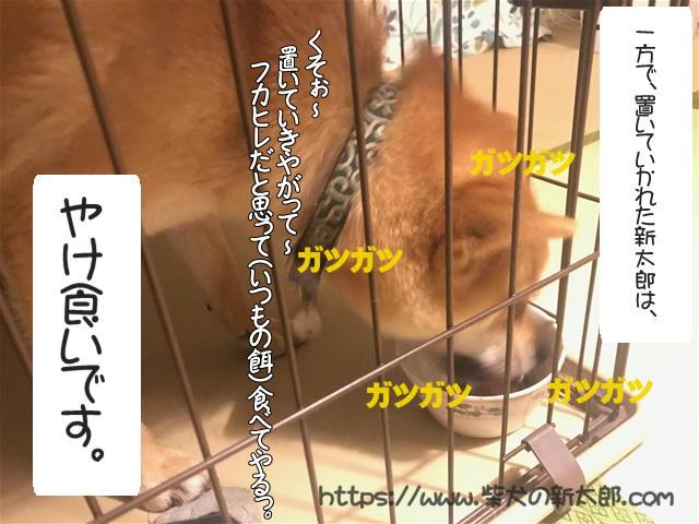f:id:tetsujin64go:20190923205127j:plain
