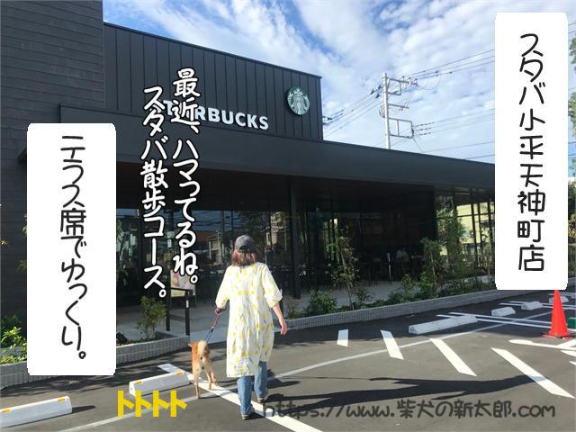 f:id:tetsujin64go:20190924092538j:plain