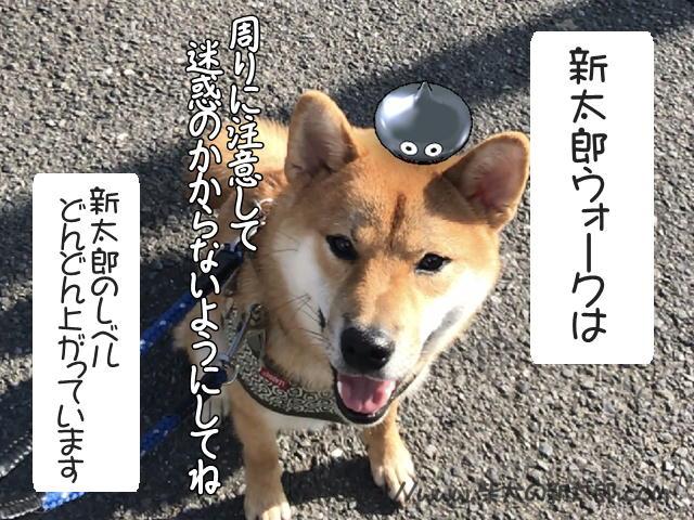 f:id:tetsujin64go:20190925095021j:plain