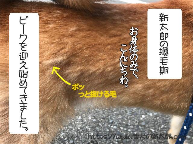 f:id:tetsujin64go:20190926101722j:plain