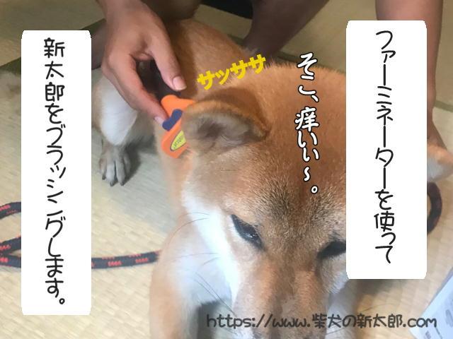 f:id:tetsujin64go:20190926101752j:plain