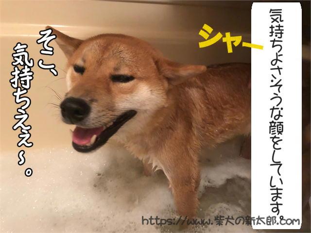 f:id:tetsujin64go:20190926102129j:plain