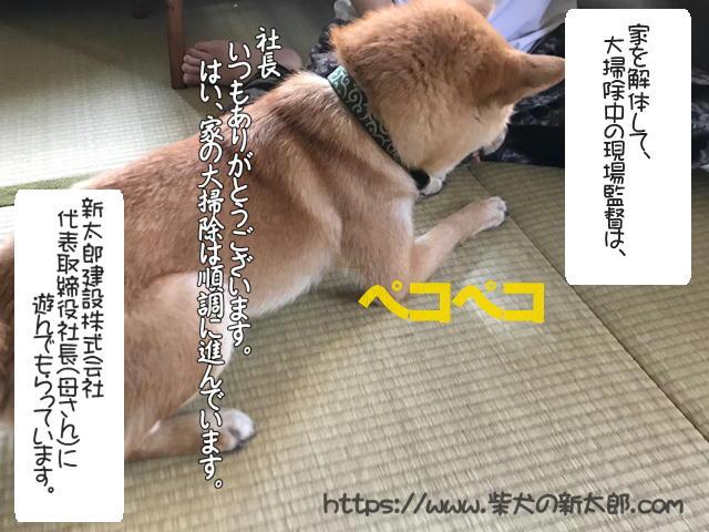 f:id:tetsujin64go:20190930095807j:plain