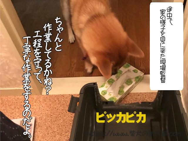 f:id:tetsujin64go:20190930095819j:plain