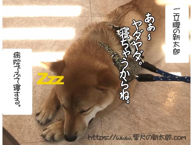 f:id:tetsujin64go:20191003125245j:plain