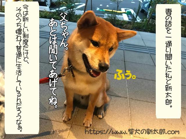 f:id:tetsujin64go:20191008103033j:plain