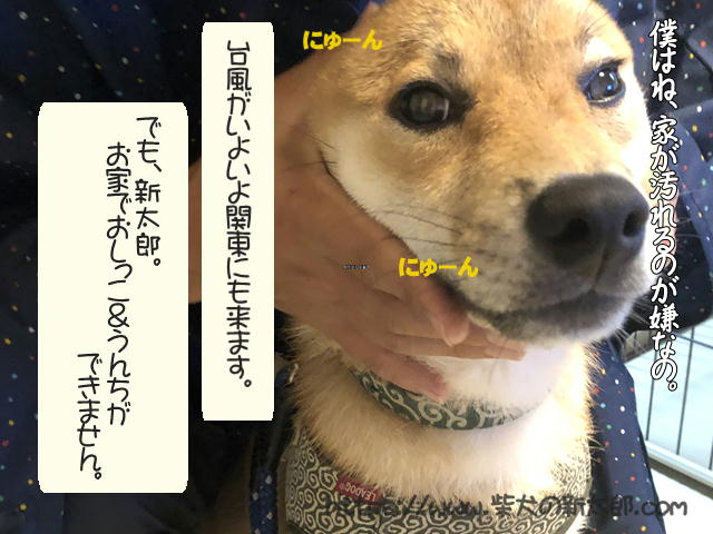 f:id:tetsujin64go:20191012190143j:plain
