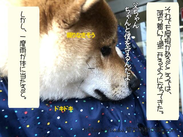 f:id:tetsujin64go:20191012190408j:plain