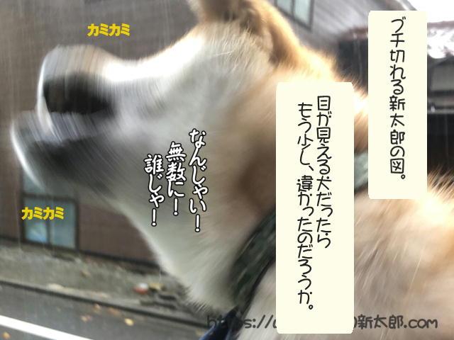 f:id:tetsujin64go:20191012190428j:plain