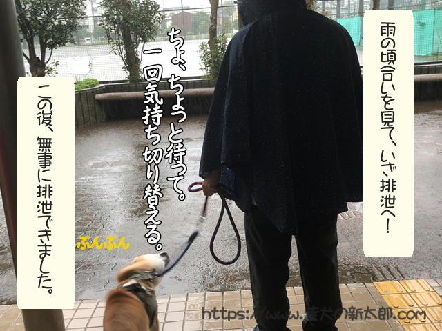 f:id:tetsujin64go:20191012190518j:plain