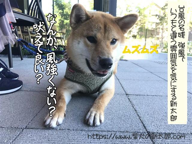 f:id:tetsujin64go:20191013120833j:plain