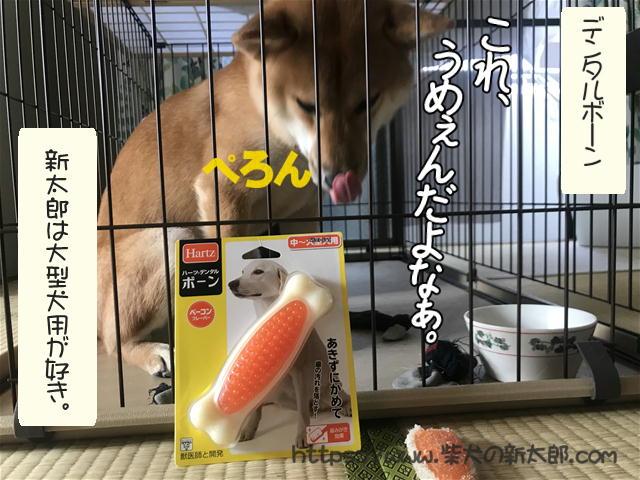 f:id:tetsujin64go:20191027192428j:plain