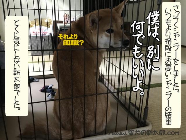 f:id:tetsujin64go:20191027192538j:plain