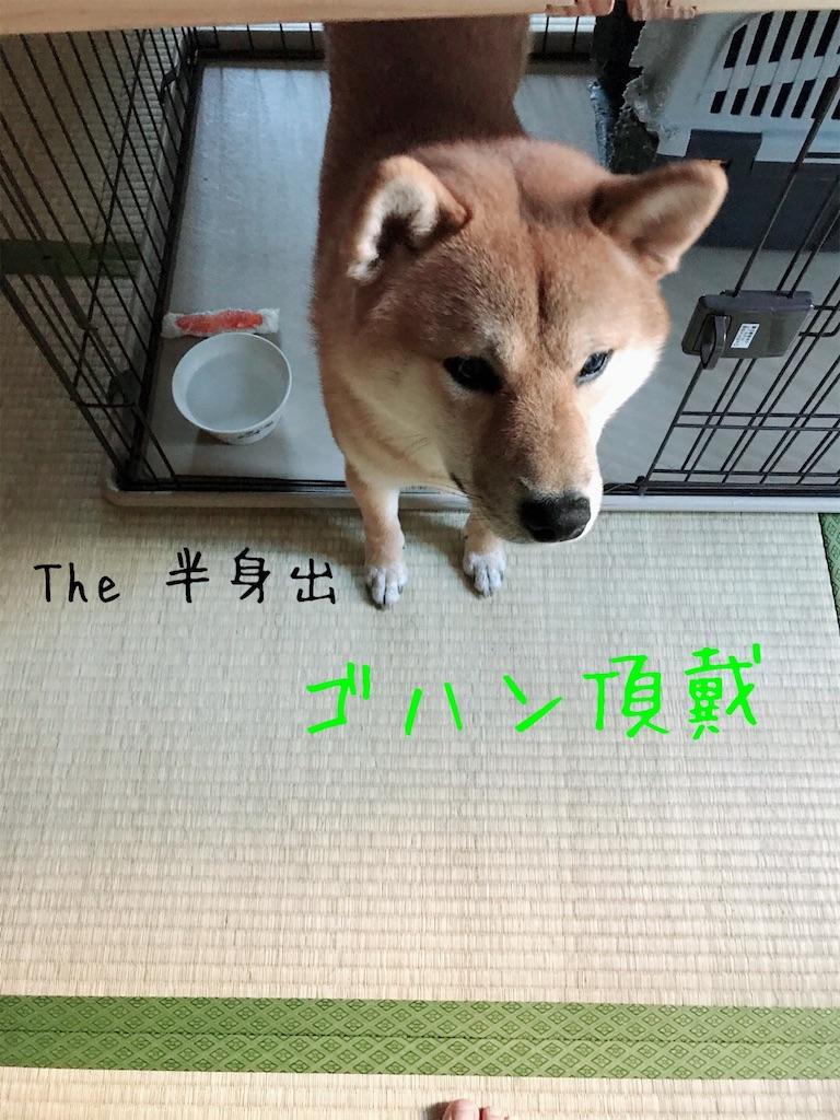 f:id:tetsujin64go:20191227093707j:image