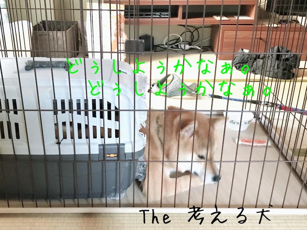f:id:tetsujin64go:20191227094010j:image