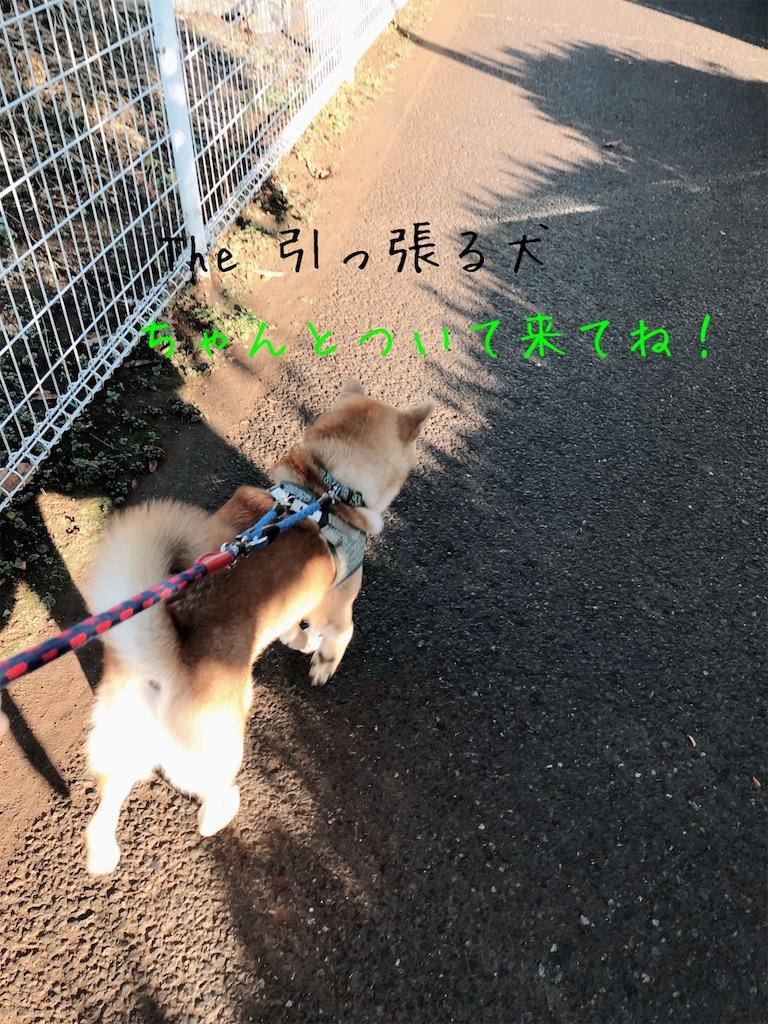 f:id:tetsujin64go:20191227094158j:image
