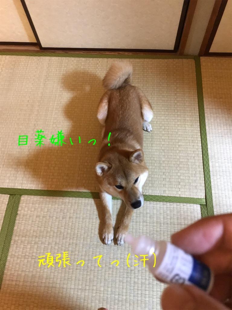 f:id:tetsujin64go:20191227162346j:image