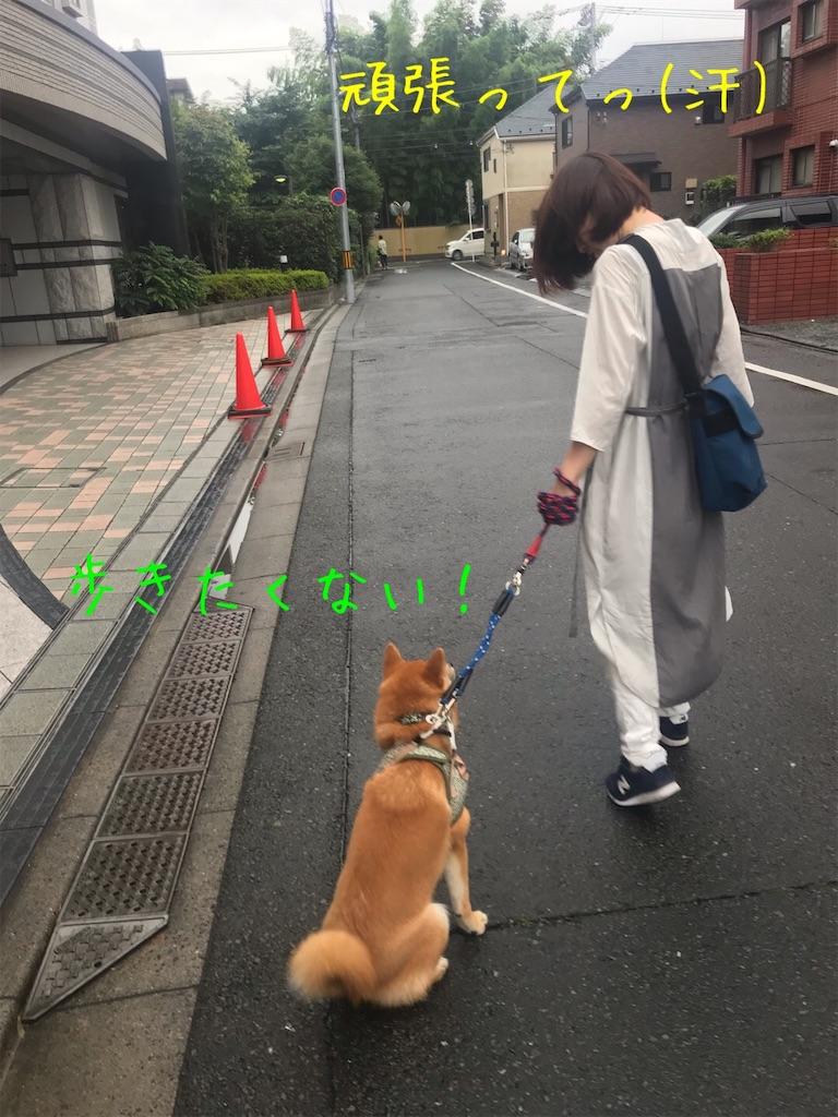 f:id:tetsujin64go:20191227162402j:image