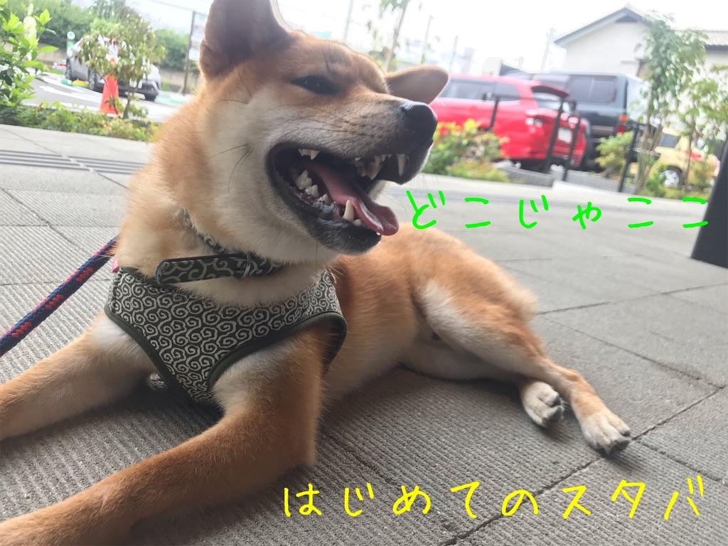 f:id:tetsujin64go:20191230163423j:image