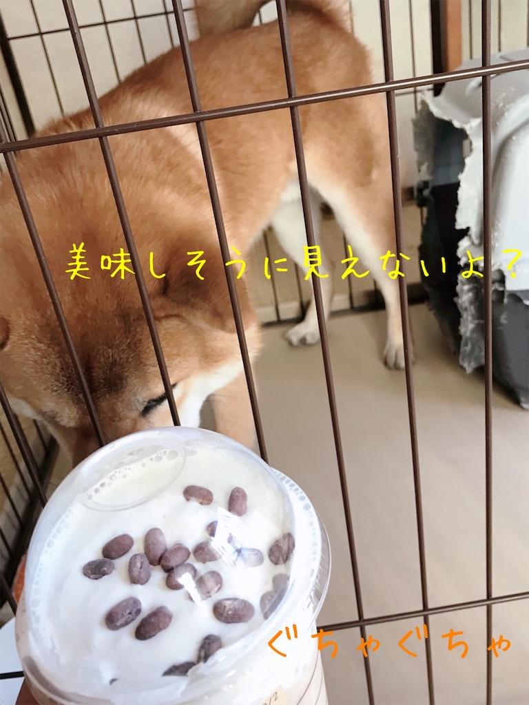 f:id:tetsujin64go:20191231161317j:image