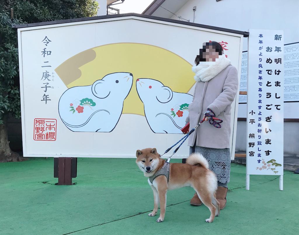 f:id:tetsujin64go:20200101105134p:image
